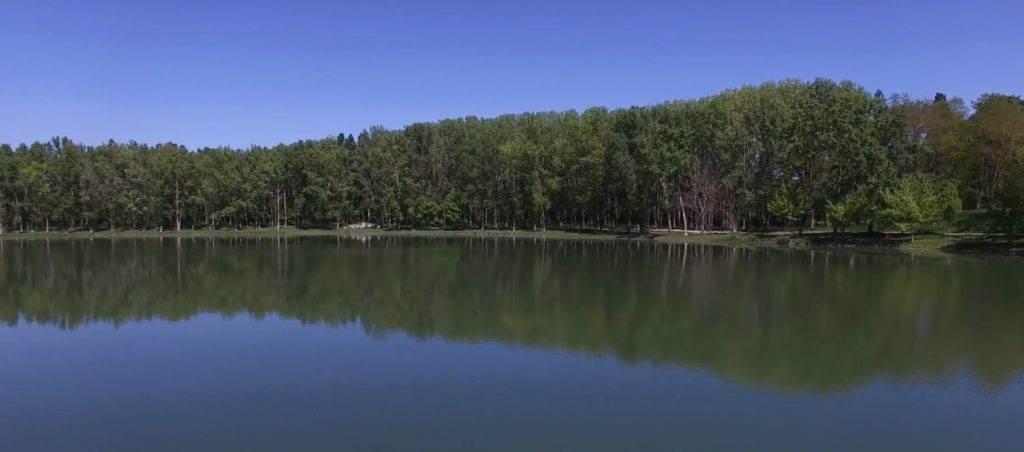 Lac de Monestié