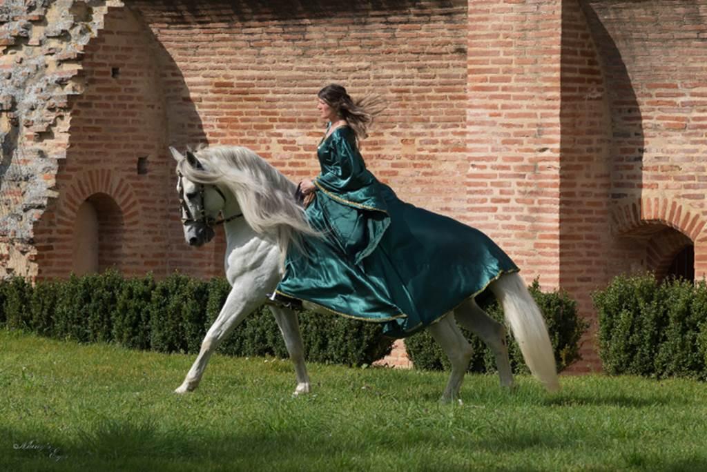 Les Médiévales - Femme(s) au Moyen Âge