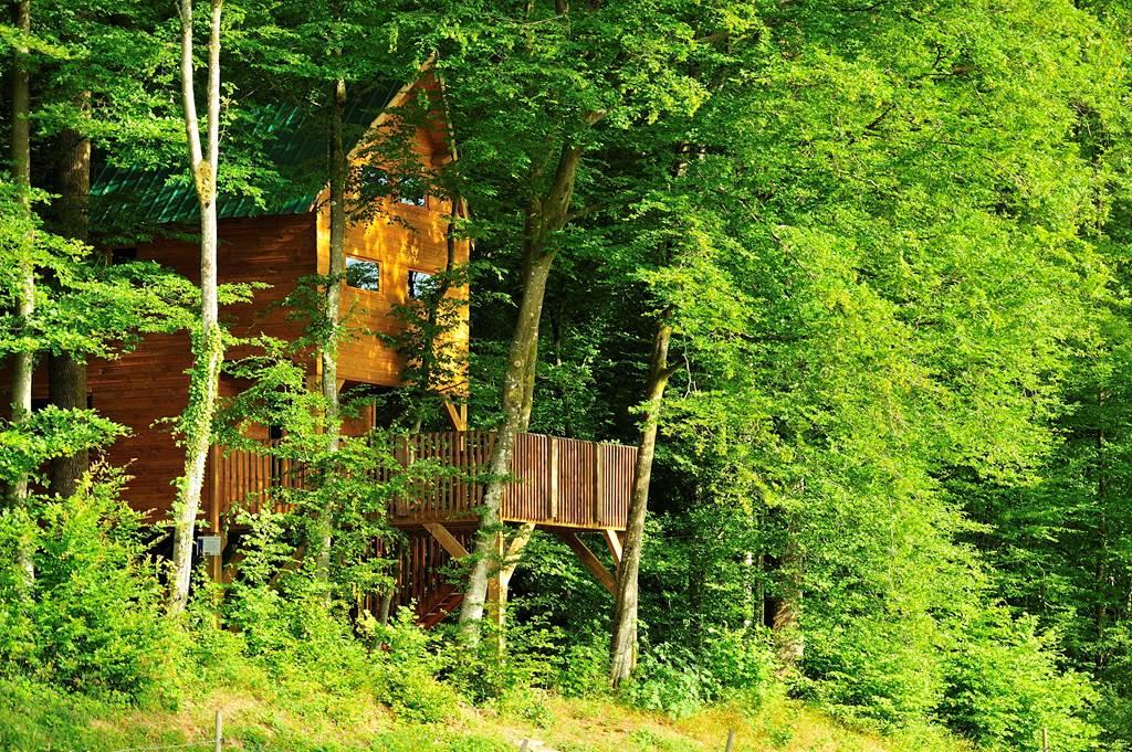 Le Chêne Perché - Cabanes à la cime des arbres