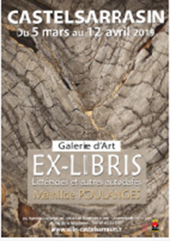 Ex-Libris Littéracies et autres autodafés