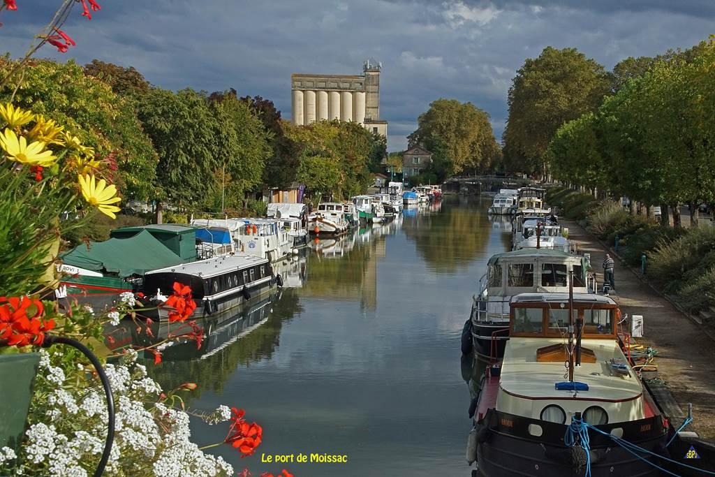 Découvertes Insolites - Des berges du Tarn au Canal - Les Vendredi