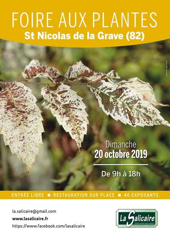 Foire aux plantes de la Salicaire dès 9H