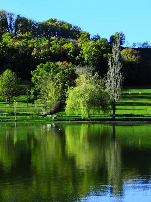El Lago de Bouzigues