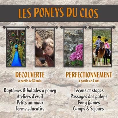 Les Poneys du Clos ©