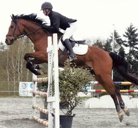 Photo saut d'obstacle - Haras du Cosquer ©