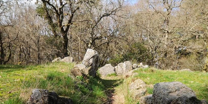 Dolmen de Mané Bogad Ploemel - Morbihan Bretagne sud (2) © C. WACTAUSEN
