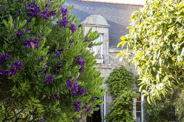 CREPERIE DU VIEUX PORT-Quiberon-Morbihan-Bretagne Sud-2 © CREPERIE DU VIEUX PORT