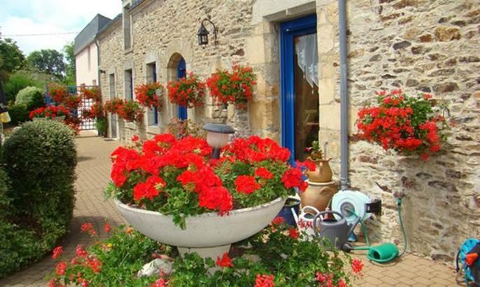 Daol-Grenn-Pluvigner-Morbihan-Bretagne-Sud © Bernard Marchand