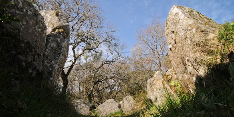 Dolmen de Mané Bogad Ploemel - Morbihan Bretagne sud (3) © C. WACTAUSEN