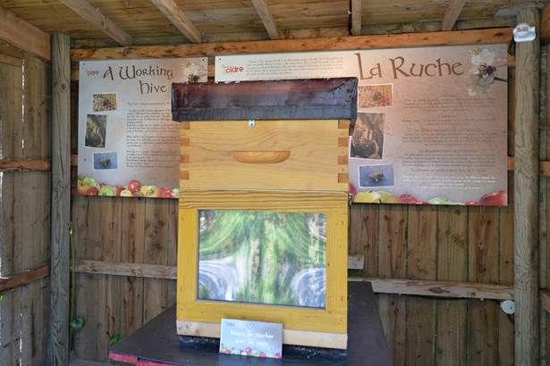 La-Maison-du-Cidre-Le-Hezo-Morbihan-Bretagne-Sud-HD56-4 © M.RENAC-CDT56-2017