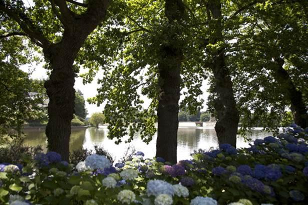 Arboretum de l'hortensia - Ploermel - Morbihan Bretagne sud © CDT56 - Marc Schaffner