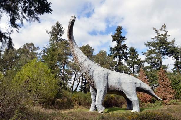 parc de prehistoire de bretagne - malansac - morbihan bretagne sud-09 © Michel RENAC