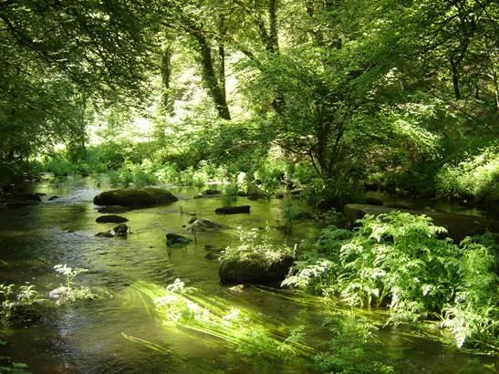 Vallée du Scorff - Pays du roi Morvan - Morbihan Bretagne Sud © OTPRM