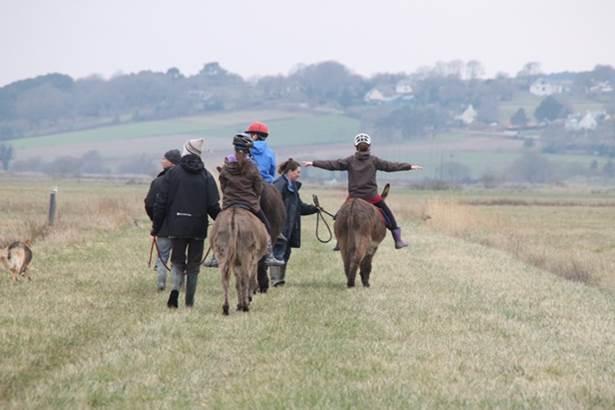 des marais et des ânes © promenade avec les ânes