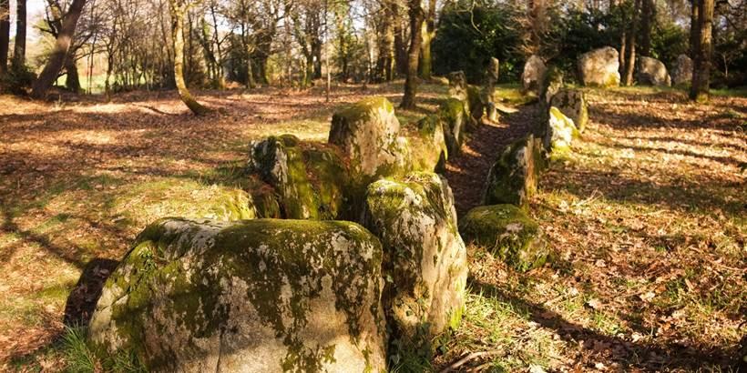 Dolmen du Luffang Crach - Morbihan Bretagne sud (3) © C. WACTAUSEN