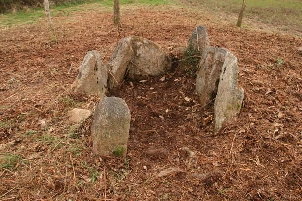 Dolmen Lost er Lenn Morbihan-Bretagne-sud © CDT56