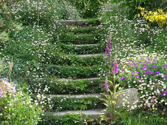 escalier fleuri ©