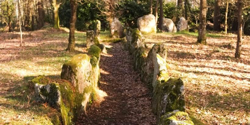 Dolmen du Luffang Crach - Morbihan Bretagne sud (2) © C. WACTAUSEN