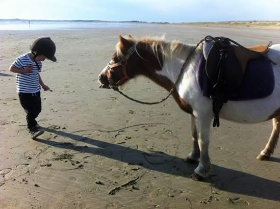 Les poneys du clos © Les poneys du clos
