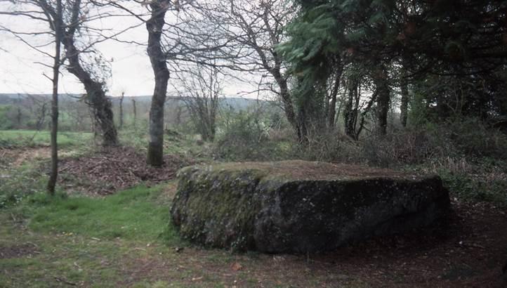 Roche de Trébran © Office de Tourisme du Pays de Mauron