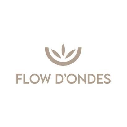 flow_d_ondes_locmariaquer ©