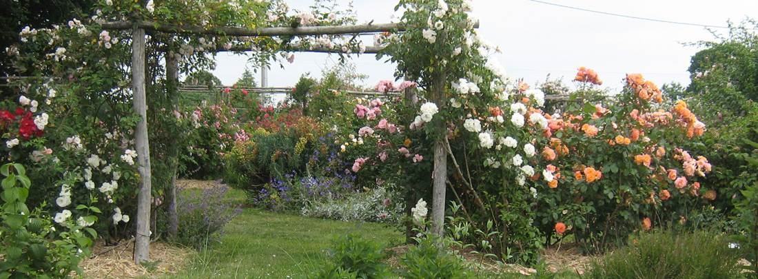 Jardin-de-Keroguic-Baud-Morbihan-Bretagne-Sud © JY Le Paih