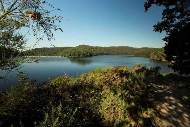 Le Lac de Guerlédan à Pied  © Yannick Derennes