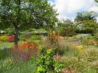 Visite du jardin Eden du Voyageur