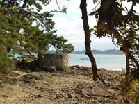 Balade découverte de l'île Berder avec Jackie