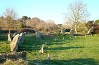 Enceinte mégalithique de Kergonan
