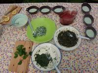 Stage plantes sauvages comestibles : cueillette et cuisine