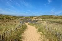 Balade nature : on a marché... sur la dune !
