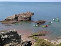 Sorties nature en kayak de mer
