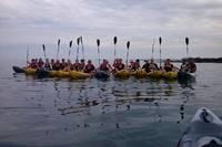 Sortie en Kayak / Paddle avec Nautic Sport