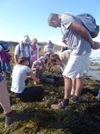 A la Découverte des Algues avec Mélanie Chouan
