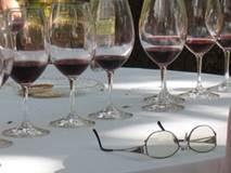 Cours de dégustation dans une cave à vin des Bouches-du-Rhône