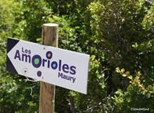 Chemin des Amorioles