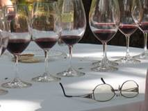 Apprentissage des vins de Bourgogne
