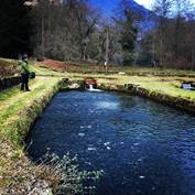 Visite de la Ferme Aquacole des Chutes d'Aston