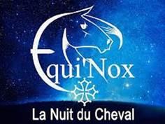 DES CHEVAUX ET DES HOMMES À FOIX