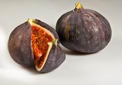 Les mardis des producteurs - Tindoulets de la figo