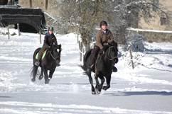 Equitation avec L'écrin des Cimes