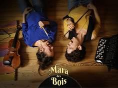 EXPOSITIONS AU CHÂTEAU DE FICHES À VERNIOLLE