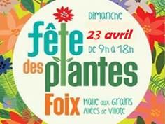 FÊTE DES PLANTES À FOIX