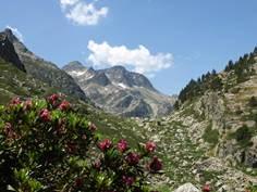 L'Observatoire de la Montagne - Accompagnateurs en montagne