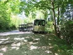 Visite guidée de 2 h avec montée en petit train à la Grotte de Lombrives