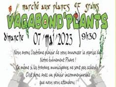 VAGABOND'PLANTS À BAULOU