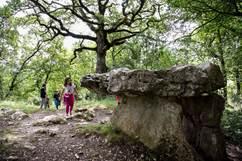 Le dolmen du Cap del Pouech