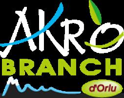AKRO BRANCH ORLU