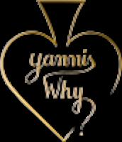 Magicien Yannis whY